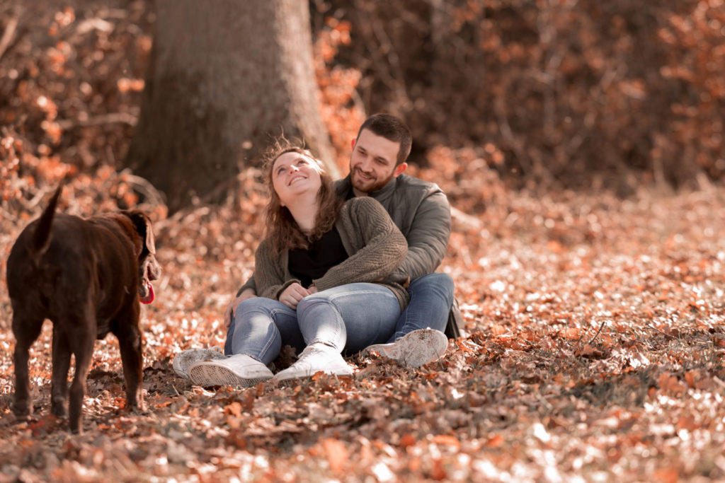 Hundefotos Hundefotografie Jana Bleich Fotografie Haustier hachenburg Fotografhachenburg Paarfotos Verlobung Liebe Familienfotografie